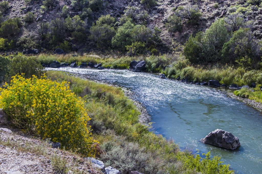 """""""Rio after San Juan-Chama feed""""                                                                                      Photo by Evan Barela The Rio Grande north of Albuquerque receives water from the San Juan River as well as the Chama River."""