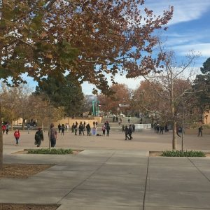 University of New Mexico- the largest college in the First Congressional District with roughly 28,000 students. Many students are concerned with rising tuition rates.