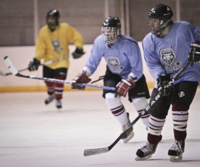 8429_hockeyf