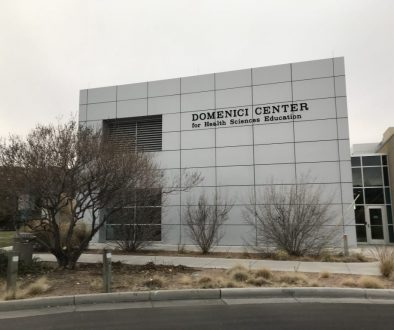 Domenici Center