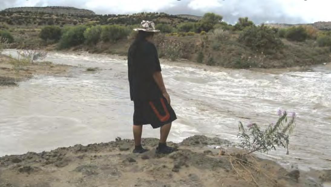 Pipeline Arroyo