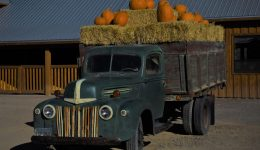 McCall pumpkin truck